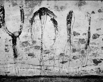 "Neal White Photo, Grafitti ""You"" on a wall, 1970s"