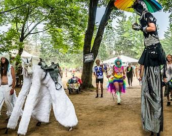 12 x 12 Unicorns at Electric Forest Music Festival in Michigan EDM PHOTO