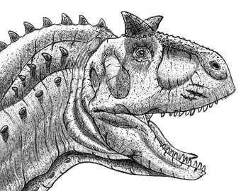 Illustration of dinosaur species Carnotaurus sastrei