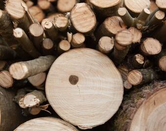 Photography wood