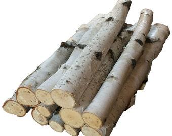 Birch Bundle of Logs (10) Free Shipping