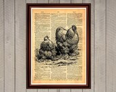 CUSTOM ORDER / Rooster and hen country farm domestic animals eggs print Rustic decor Vintage Retro poster Dictionary page Home interior 0065