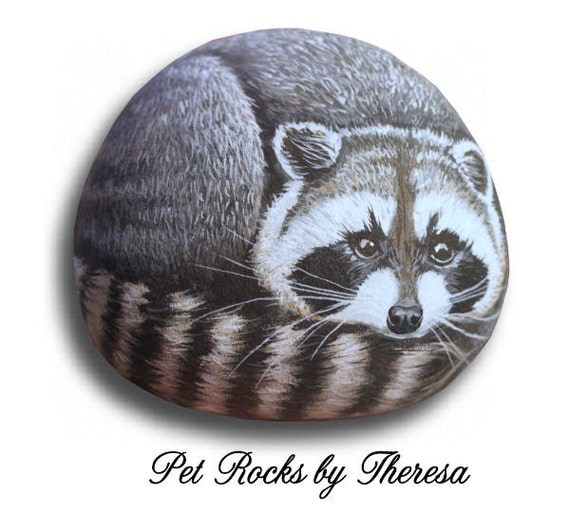 Hand Painted Raccoon on Smooth Beach Stone Original Artwork Direct from Artist