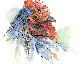 Chicken in red and blue watercolor with pen and ink- Illustration print in multiple sizes