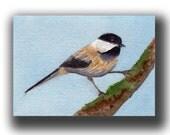 ACEO watercolor CHICKADEE original painting SFA miniature bird art