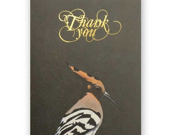 Hoopoe Set of 12 Thank You Cards