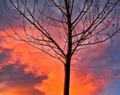 Golden Orange Sunset, Rocky Mountain Sunset, Halloween Sunset, Autumn Night Sky, Evening Light, Photograph or Greeting card