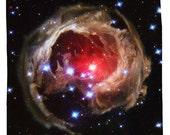 V838 Monocerotis Light Echo Star Shower Curtain - Printed in USA