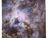 Nebula Shower Curtain, Optical View of Tarantula Nebula - Printed in USA