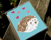 Love Animals - Box of 8 Assorted Cards