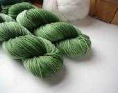 DK Weight Yarn, Hand Dyed Superwash Merino Wool, 310 yards/100 Grams, The Grass Is Always Greener