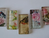 Vintage Birds and Floral Glass Magnets Set of 5