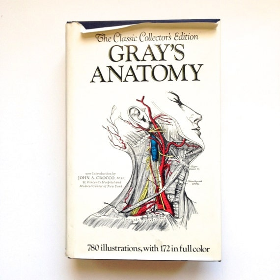 grey anatomy review book