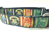 Dog Collar, Harry Potter, 1 inch wide, adjustable, quick release, metal buckle, chain, martingale, hybrid, nylon