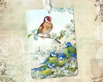 Tags, Bird Tags, Gift Tags, Blue Bird Tags, Gift Tags