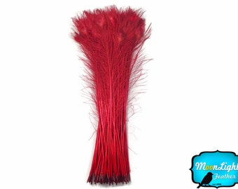 "Peacock Tails, 100 Pieces - 30-35"" RED Bleached and Dyed Wholesale Peacock Tail Feathers (bulk) : 3428"
