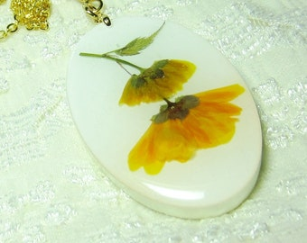 Japanese Yellow Rose, Pressed Flowers, Real Flowers,  Resin (1526)