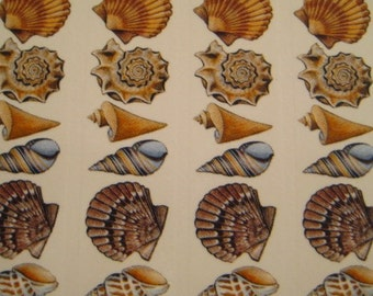 34 TOTAL SHELLS High Fire Decals for Fused Glass and Ceramics SMALL
