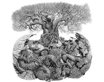 Five Fine Art Cards.Black white natural history