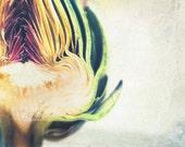 artichoke print, food photography, kitchen decor, emerald green, avoir un coeur d'artichaut, vegetable, photograph, yellow, purple, chef
