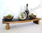 "TERRARIUM - ""Catena"" - Hand Blown Glass Terrarium Set - 100% Recycled"