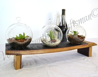 "TERRARIUM - ""Catena"" - Hand Blown Glass Terrarium Set - 100% Recycled"