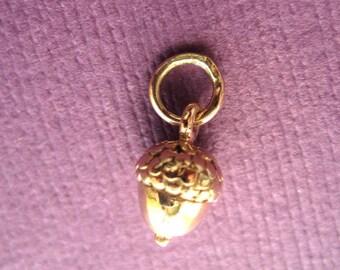 Acorn Charm 3D in Bronze