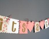 Baby Shower Banner - Rustic Shabby Chic Girl Baby Shower - Baby Girl - Brown Pink White