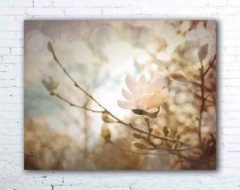 pastel wall art - magnolia tree photography - floral print - botanical art