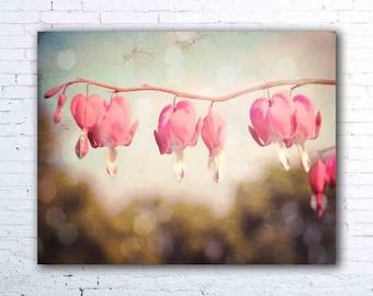 bleeding hearts print - flower photography - pink floral wall art - bleeding heart flowers