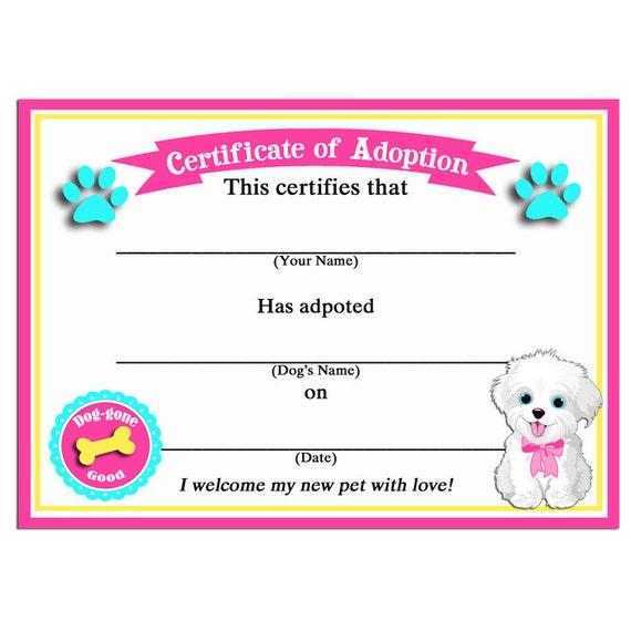Dog Adoption Paperwork