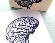 Unique Gray Matter Related Items Etsy