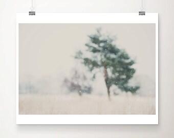 winter photograph  falling snow photograph tree photograph nature photography landscape photograph snow print tree print