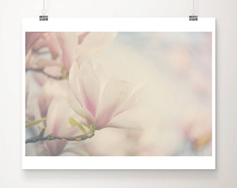 pink magnolia photograph magnolia tree photograph pink flower photograph nature photography spring photograph paste home decor
