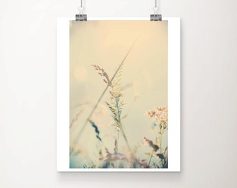 nature photography summer photograph wild flower photograph grass photograph botanical print nature print summer print