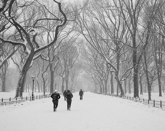 New York Photography, Winter Prints, Central Park Art, Nature Photography, Black and White Photography, Winter in Central Park