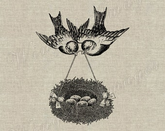 Two Birds And Nest With Eggs. Instant Download Digital Image No.305 Iron-On Transfer to Fabric (burlap, linen) Paper Prints (cards, tags)