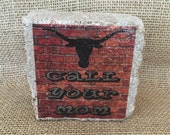 Call Your Mom Longhorn Mini Brick Stone decor