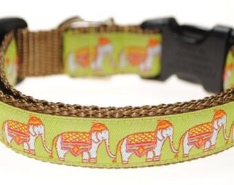 "Elephants on Parade - 3/4"" Adjustable Dog Collar"