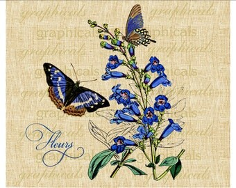 Royal blue flower Butterflies Digital download graphic image for Iron on fabric transfer burlap tote bag decoupage pillow card No. 438
