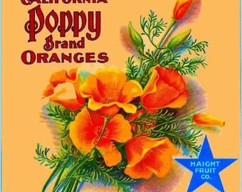 Redlands- California Poppy Orange Citrus Fruit Crate Box Label Art Print