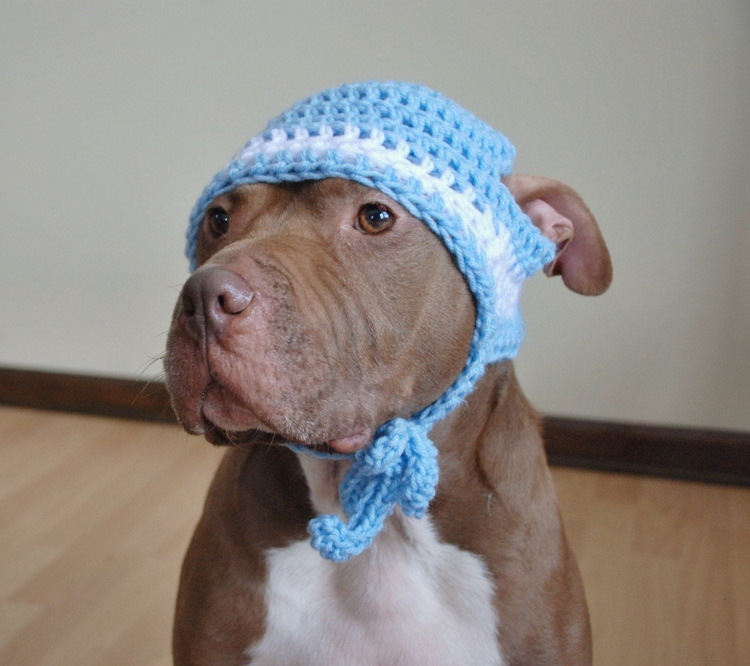 Crochet Pattern For Dog Hat With Ear Holes : Dog Hat Large Crochet Blue and White by courtanai on Etsy