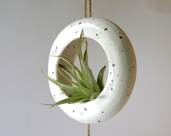 White hanging planter. Terrarium, rustic home decor, air plant, tillandsia hanging contemporary plant holder.