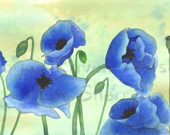 Blue Poppies - Limited Edition Print of Bright, Blue Poppies