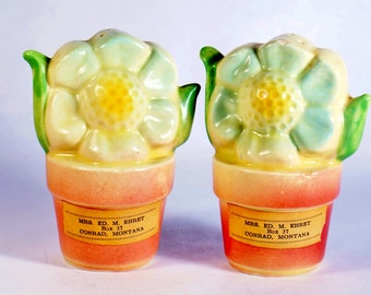 Flower Pot Salt Pepper Shakers Shawnee 2 Kenneywood Park Pair Vintage And Cluster Labels Set