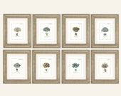 Set of 8 Blue Grey & Dark Tan Sea Coral Specimens Naturalist Collection Archival Prints on Watercolor Paper