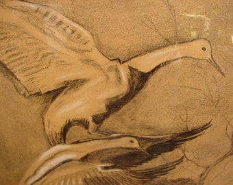 antique charcoal & chalk drawing, birds in flight-X.Georgalas-Greek art. 27 3/4'' x 17 3/4''