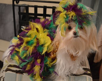 Mardi Gras Show Dog Costume/Dress with Headpiece for xsmall or small dog
