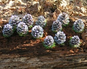 Sparkling Silver Pine Cones Standing on Weighted Bottoms & Nestled in Moss***Home Decorating, Wedding Table Name Cards, Number Holders, ACEO