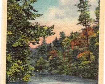 Vintage Linen Postcard...Buffalo Creek in Happy Valley, near Lenoir, NC....Unused...no. 1542